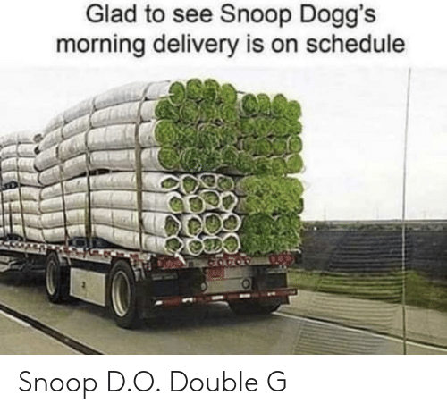 D: Snoop D.O. Double G