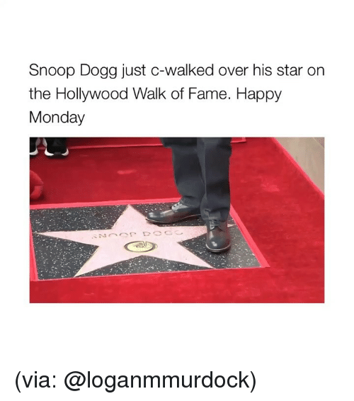 snoop dogg: Snoop Dogg just c-walked over his star or  the Hollywood Walk of Fame. Happy  Monday (via: @loganmmurdock)