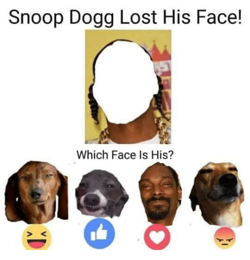 snoop dogg: Snoop Dogg Lost His Face!  Which Face Is His?