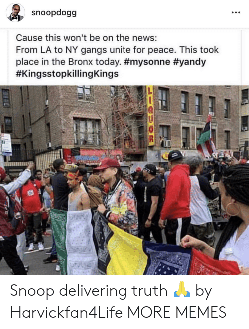 Bronx: snoopdogg  Cause this won't be on the news:  From LA to NY gangs unite for peace. This took  place in the Bronx today. Snoop delivering truth 🙏 by Harvickfan4Life MORE MEMES