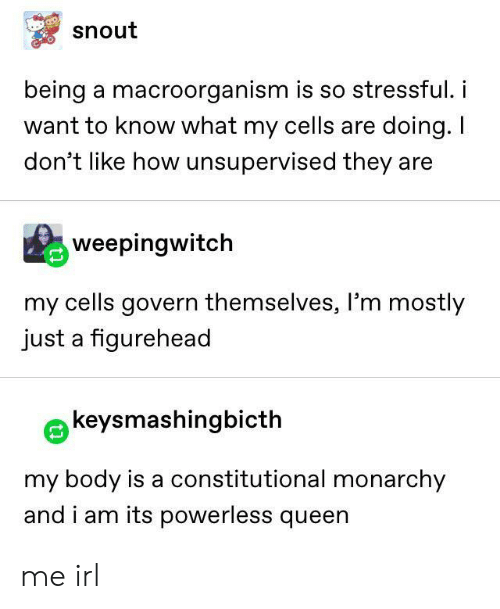 cells: snout  being a macroorganism is so stressful.i  want to know what my cells are doing. I  don't like how unsupervised they are  weepingwitch  my cells govern themselves, l'm mostly  just a figurehead  keysmashingbicth  my body is a constitutional monarchy  and i am its powerless queen me irl
