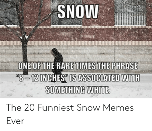 Funny Snow Memes: SNOW  OETE RARE TIMES THEPHRASE  8-12INCHES IS ASSOCIATED WITH  SOMETHING WHITE The 20 Funniest Snow Memes Ever