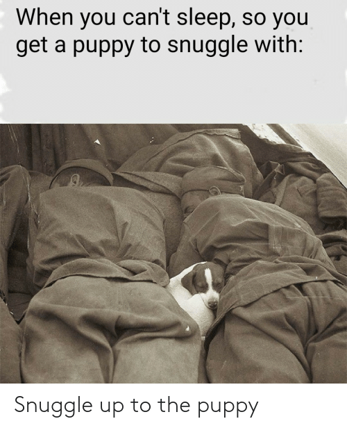 snuggle: Snuggle up to the puppy