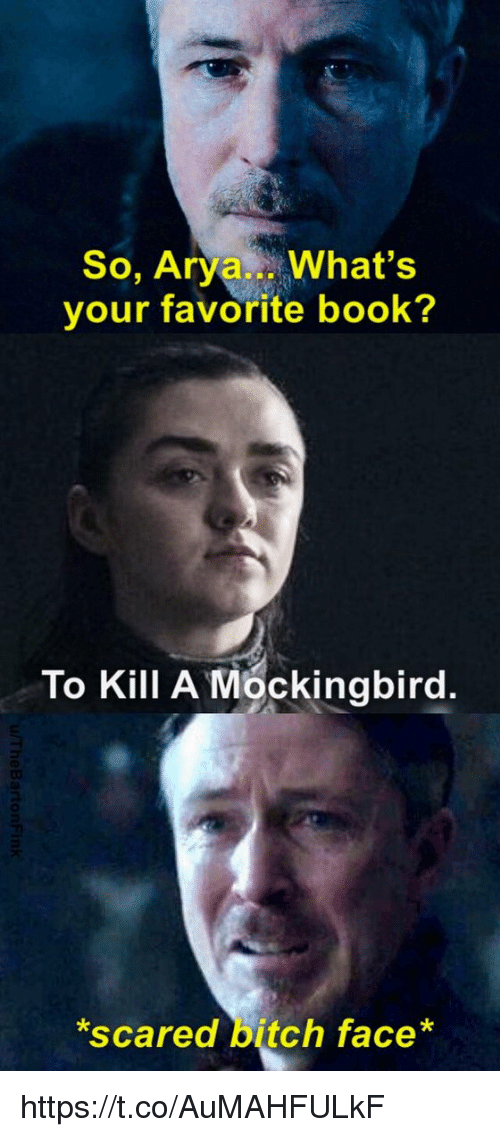 mockingbird: So, Arya What's  your favorite book?  To Kill A Mockingbird.  scared bitch face* https://t.co/AuMAHFULkF