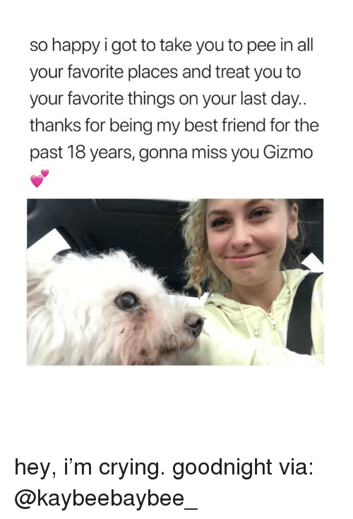 gonna miss you: so happy i got to take you to pee in all  your favorite places and treat you to  your favorite things on your last day  thanks for being my best friend for the  past 18 years, gonna miss you Gizmo hey, i'm crying. goodnight via: @kaybeebaybee_