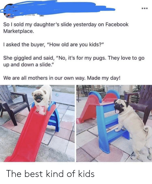 "Facebook, Love, and Best: So I sold my daughter's slide yesterday on Facebook  Marketplace.  I asked the buyer, ""How old are you kids?""  She giggled and said, ""No, it's for my pugs. They love to go  up and down a slide.""  We are all mothers in our own way. Made my day! The best kind of kids"