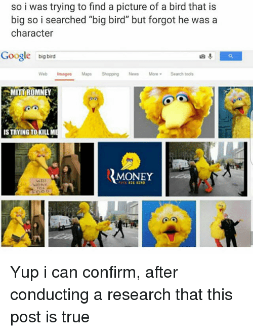 "Confirmated: so i was trying to find a picture of a bird that is  big so i searched ""big bird"" but forgot he was a  character  Google big bird  Web Images Maps Shopping News MoreSearch tools  MITT{ROMNEY  IS TRYING TO KILLM  MONEY Yup i can confirm, after conducting a research that this post is true"