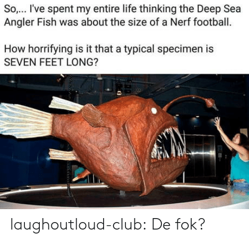 specimen: So.. I've spent my entire life thinking the Deep Sea  Angler Fish was about the size of a Nerf football.  How horrifying is it that a typical specimen is  SEVEN FEET LONG? laughoutloud-club:  De fok?