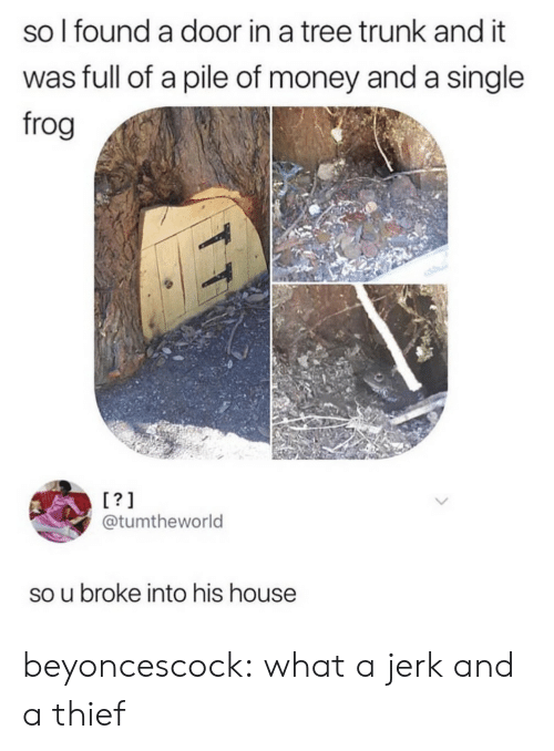 Money, Tumblr, and Blog: so l found a door in a tree trunk and it  was full of a pile of money and a single  frog  @tumtheworld  so u broke into his house beyoncescock: what a jerk and a thief