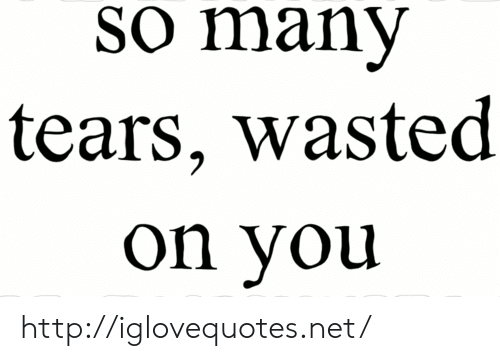 Http, Net, and You: So many  tears, wasted  on you http://iglovequotes.net/