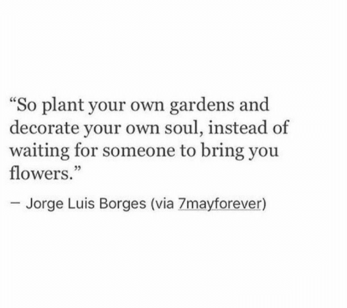 "Jorge: So plant your own gardens and  decorate your own soul, instead of  waiting for someone to bring you  flowers.""  ce  05  Jorge Luis Borges (via 7mayforever)"