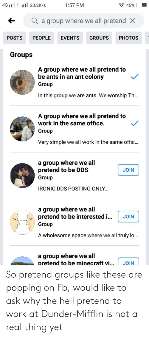 Why The Hell: So pretend groups like these are popping on Fb, would like to ask why the hell pretend to work at Dunder-Mifflin is not a real thing yet
