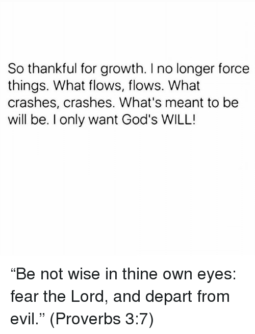 """departed: So thankful for growth. I no longer force  things. What flows, flows. What  crashes, crashes. What's meant to be  will be. I only want God's WILL! """"Be not wise in thine own eyes: fear the Lord, and depart from evil."""" (Proverbs 3:7)"""