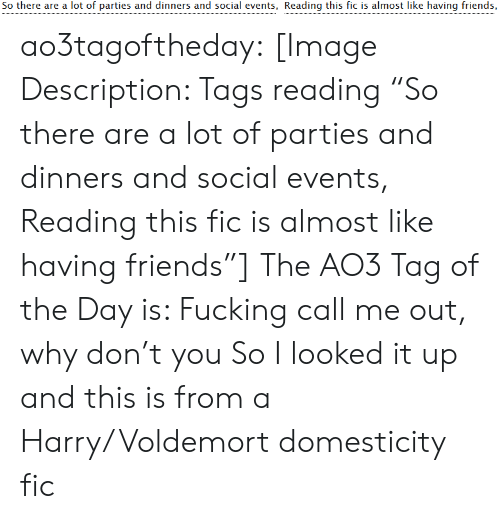 "Why Don: So there are a lot of parties and dinners and social events, Reading this fic is almost like having friends, ao3tagoftheday:  [Image Description: Tags reading ""So there are a lot of parties and dinners and social events, Reading this fic is almost like having friends""]  The AO3 Tag of the Day is: Fucking call me out, why don't you   So I looked it up and this is from a Harry/Voldemort domesticity fic"