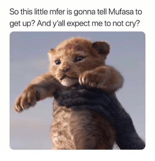 Mufasa, Humans of Tumblr, and Cry: So this little mfer is gonna tell Mufasa to  get up? And y'all expect me to not cry?