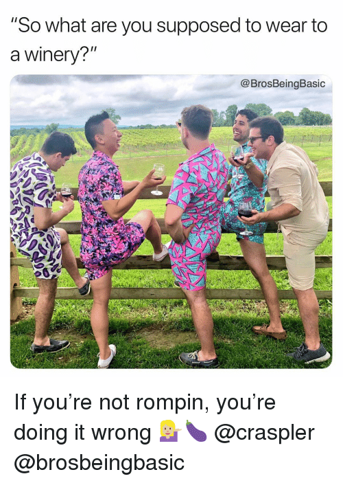 "Doing It Wrong: ""So what are you supposed to wear to  a winery?""  @BrosBeingBasic If you're not rompin, you're doing it wrong 💁🏼🍆 @craspler @brosbeingbasic"