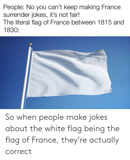 Jokes: So when people make jokes about the white flag being the flag of France, they're actually correct
