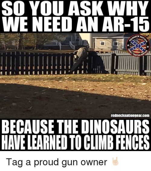 SO YOU ASK WHY WE NEED AN AR-15 Rednecknationgearcom BECAUSE