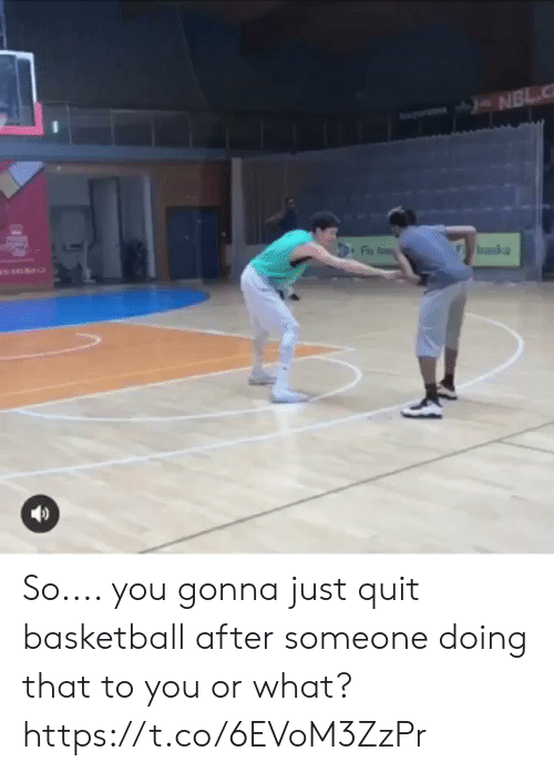 Or What: So.... you gonna just quit basketball after someone doing that to you or what? https://t.co/6EVoM3ZzPr