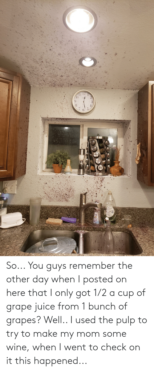 1 2: So... You guys remember the other day when I posted on here that I only got 1/2 a cup of grape juice from 1 bunch of grapes? Well.. I used the pulp to try to make my mom some wine, when I went to check on it this happened...