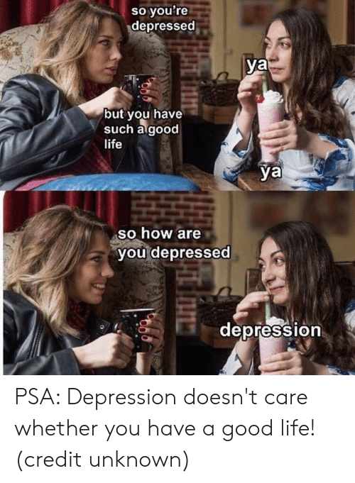 Dank, Life, and Depression: so you're  depressed  ya  but you have  such agood  life  ya  so how are  you depressed  depression  0 PSA: Depression doesn't care whether you have a good life!  (credit unknown)