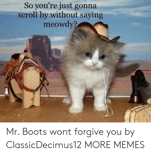 Dank, Memes, and Target: So you're just gonna  scroll by without saying  meowdy? Mr. Boots wont forgive you by ClassicDecimus12 MORE MEMES