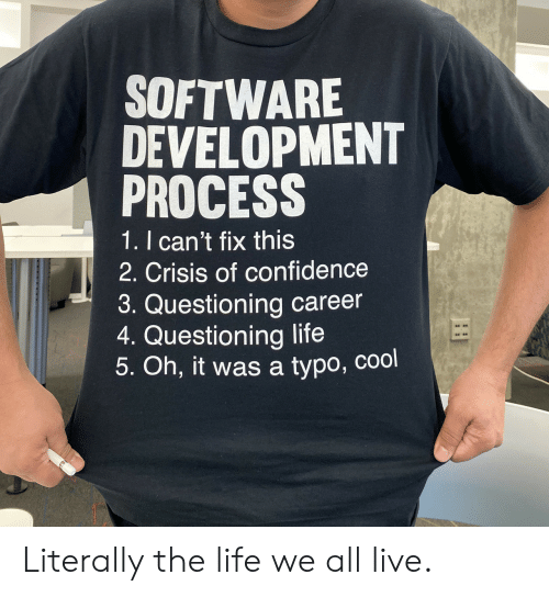 software development: SOFTWARE  DEVELOPMENT  PROCESS  1. I can't fix this  2. Crisis of confidence  3. Questioning career  4. Questioning life  5. Oh, it was a typo, cool Literally the life we all live.