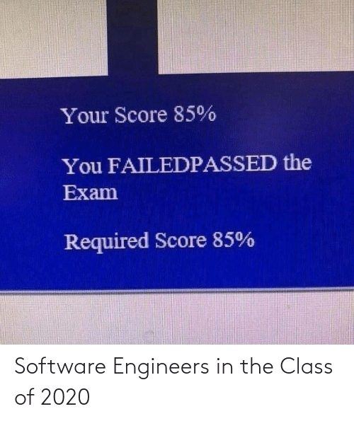 software: Software Engineers in the Class of 2020