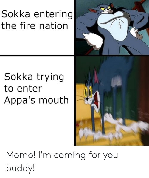 Fire, Sokka, and Momo: Sokka entering  the fire nation  Sokka trying  to enter  Appa's mouth Momo! I'm coming for you buddy!