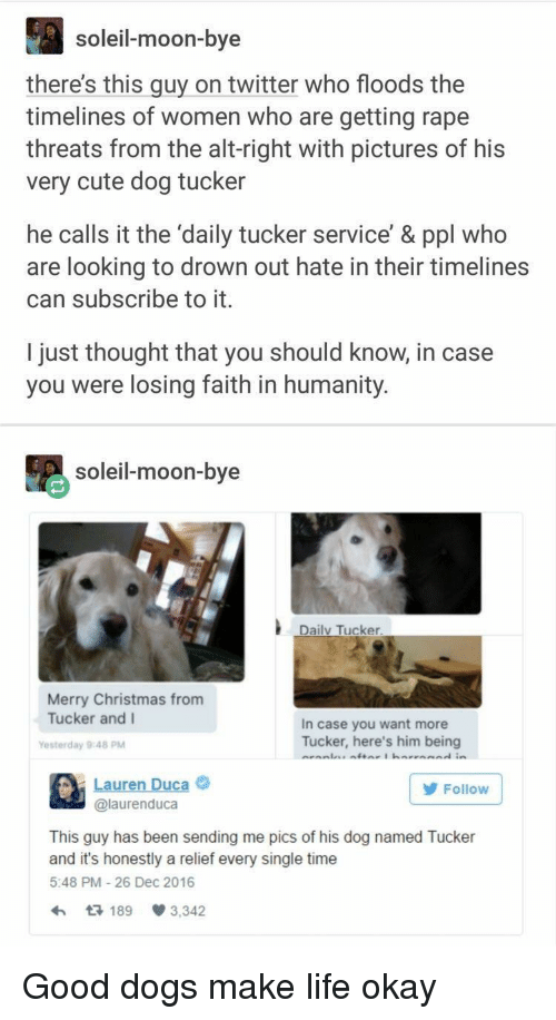 Floods: soleil-moon-bye  there's this guy on twitter who floods the  timelines of women who are getting rape  threats from the alt-right with pictures of his  very cute dog tucker  he calls it the 'daily tucker service' & ppl who  are looking to drown out hate in their timelines  can subscribe to it.  I just thought that you should know, in case  you were losing faith in humanity.  soleil-moon-bye  Daily Tucker  Merry Christmas from  Tucker and I  In case you want more  Tucker, here's him being  Yesterday 9:48 PM  Lauren Duca  @laurenduca  Follow  This guy has been sending me pics of his dog named Tucker  and it's honestly a relief every single time  5:48 PM 26 Dec 2016  189 3,342 Good dogs make life okay
