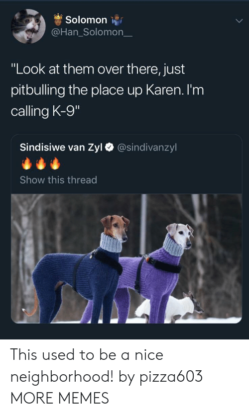 "k-9: Solomon  @Han_Solomon_  ""Look at them over there, just  pitbulling the place up Karen. I'm  calling K-9  Sindisiwe van Zyl  @sindivanzyl  Show this thread This used to be a nice neighborhood! by pizza603 MORE MEMES"