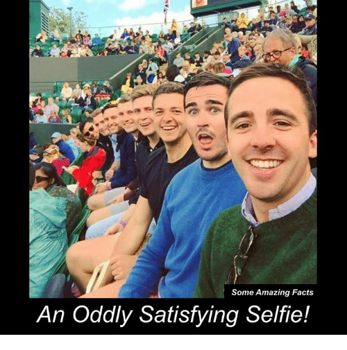 Oddly Satisfying: Some Amazing Facts  An Oddly Satisfying Selfie!