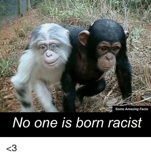No One Is Born Racist