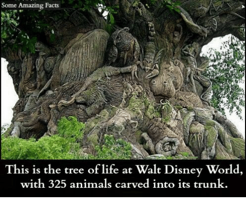Trunking: Some Amazing Facts  This is the tree of life at Walt Disney World,  with 325 animals carved into its trunk.