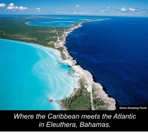 Atlante: Some Amazing Facts  Where the Caribbean meets the Atlantic  in Eleuthera, Bahamas.