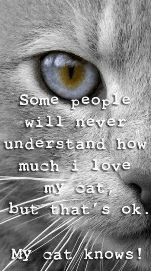 Wiiings: Some people  Wii  never  understand how  much love  but that as o  MY knows
