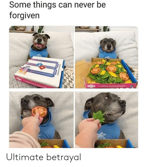Forgiven: Some things can never be  forgiven Ultimate betrayal