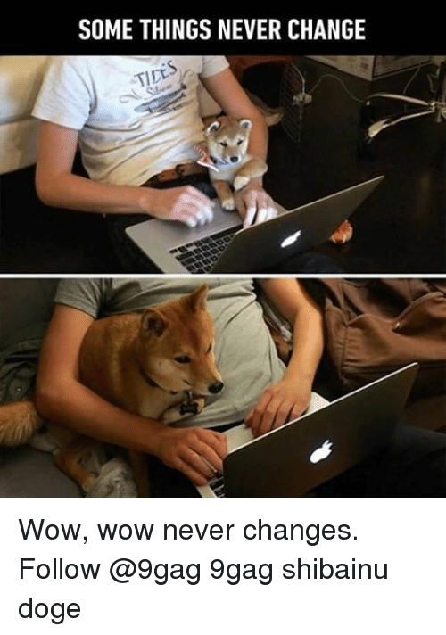 doges: SOME THINGS NEVER CHANGE  TIDE Wow, wow never changes. Follow @9gag 9gag shibainu doge