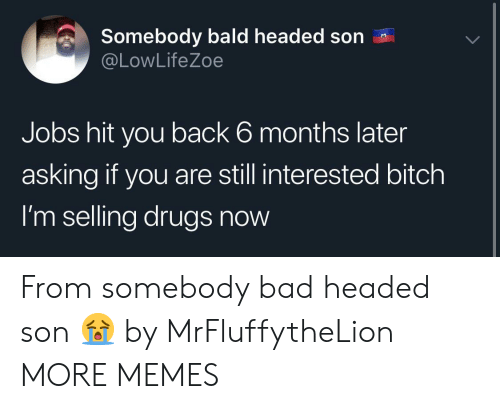 bald: Somebody bald headed son  @LowLifeZoe  Jobs hit you back 6 months later  asking if you are still interested bitch  I'm selling drugs now From somebody bad headed son 😭 by MrFluffytheLion MORE MEMES
