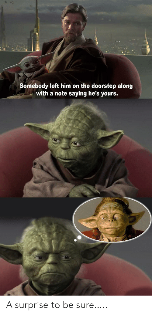 Along With: Somebody left him on the doorstep along  with a note saying he's yours. A surprise to be sure…..