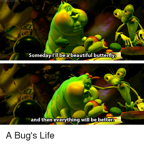 beautiful butterfly: Someday I'll be a beautiful butterfly  and then everything will be better. A Bug's Life
