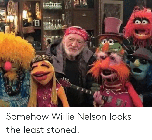 nelson: Somehow Willie Nelson looks the least stoned.