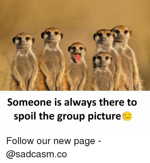 Memes, 🤖, and Page: Someone is always there to  spoil the group picture Follow our new page - @sadcasm.co