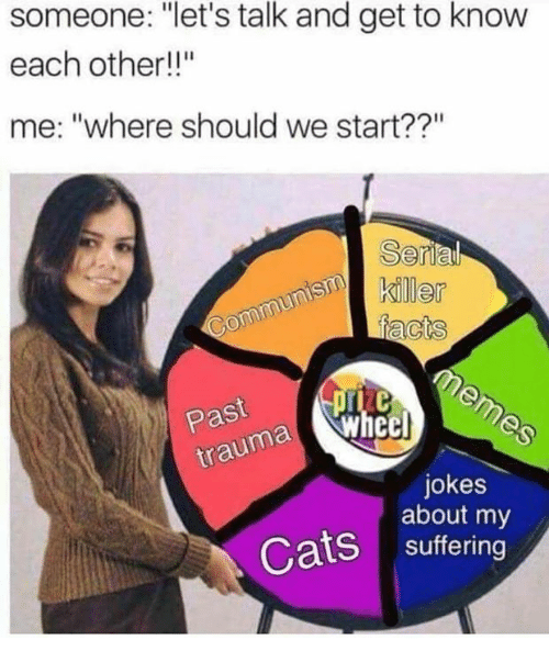 """Cats, Jokes, and Suffering: someone: """"let's talk and get to know  each other!!""""  me: """"where should we start??""""  muner  Past  ma Whecl  jokes  about my  Cats suffering"""
