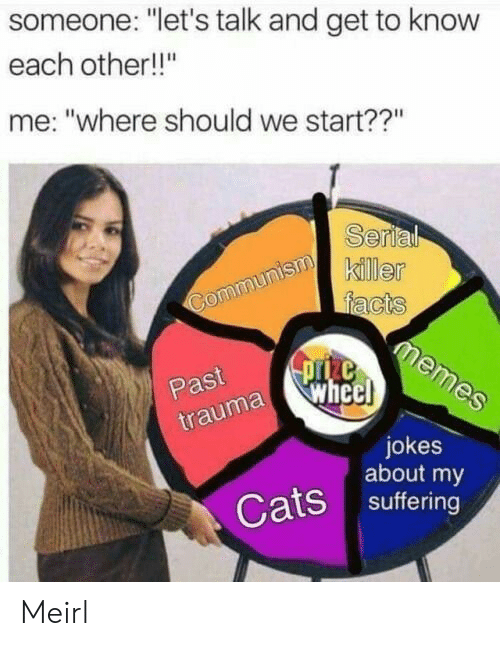 """Cats, Jokes, and Suffering: someone: """"let's talk and get to know  each other!!""""  me: """"where should we start??""""  Serl  killer  Past  uma whe  jokes  about my  Cats suffering Meirl"""