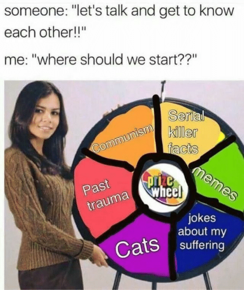 "Cats, Facts, and Memes: someone: ""let's talk and get to know  each other!!""  me: ""where should we start??""  Serial  killer  facts  memes  Communism  pze  wheel  Past  trauma  jokes  about my  Cats suffering"