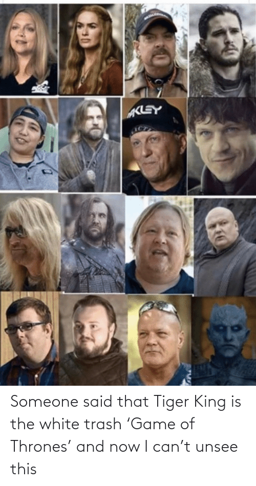 Now I: Someone said that Tiger King is the white trash 'Game of Thrones' and now I can't unsee this