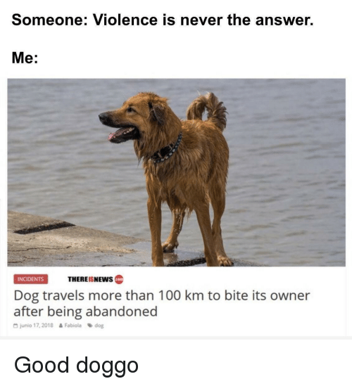 Answer Me: Someone: Violence is never the answer.  Me:  THEREISNEws  INCIDENTS  cotm  Dog travels more than 100 km to bite its owner  after being abandoned  G junio 17, 2018  Fabiola dog Good doggo