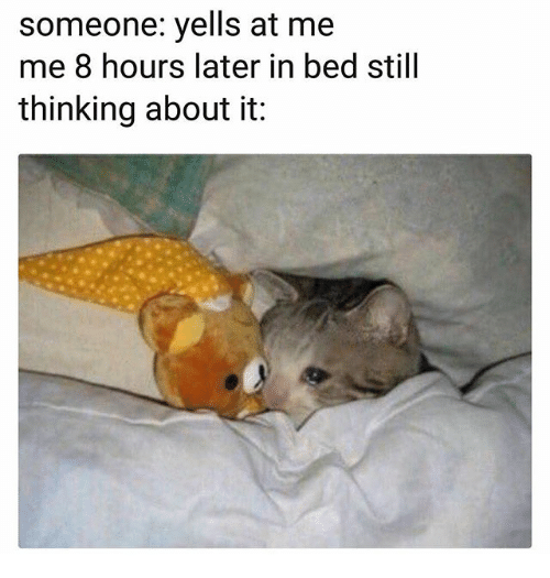 8 Hours Later: someone: yells at me  me 8 hours later in bed still  thinking about it