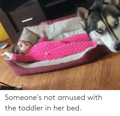 toddler: Someone's not amused with the toddler in her bed.